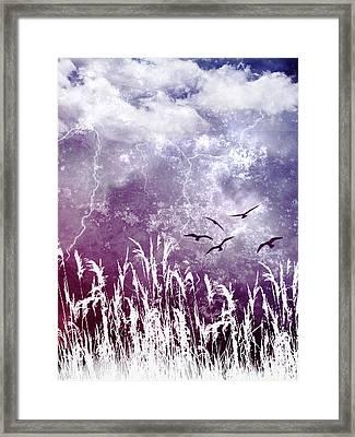 Purple Skies Framed Print by Ellen Heaverlo