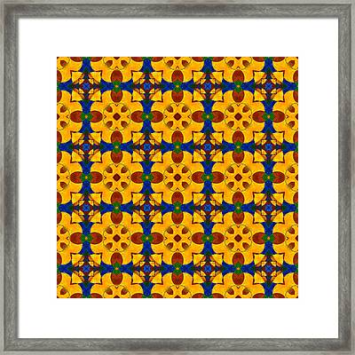 Quadrichrome 13 Symmetry Framed Print by Hakon Soreide