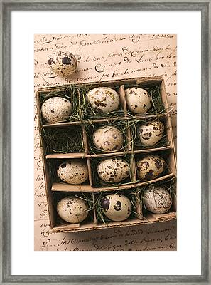 Quail Eggs In Box Framed Print by Garry Gay