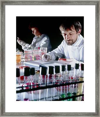 Quality Control On Media To Grow Microorganisms Framed Print by Geoff Tompkinson