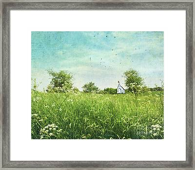 Queen Anne's Lace Wildflowers Framed Print by Sandra Cunningham