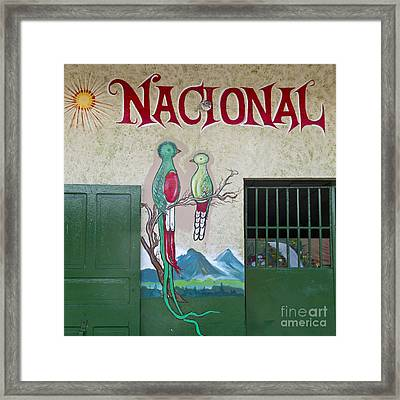 Quetzal Painting  Framed Print by Heiko Koehrer-Wagner