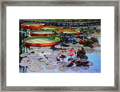 Quiet Moments Framed Print by John Lautermilch