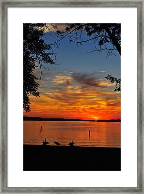 Quiet Morning Framed Print by Rusty  Enderle