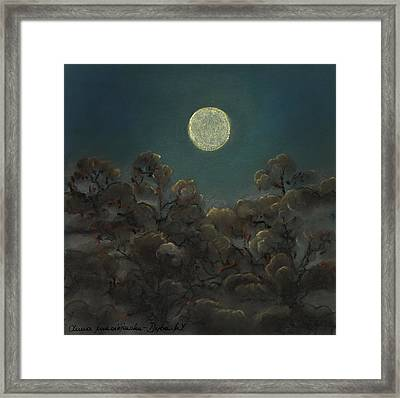 Quiet Night Framed Print by Anna Folkartanna Maciejewska-Dyba