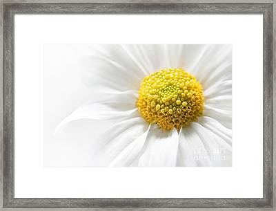 Quietly Framed Print by Dan Holm