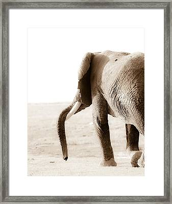 Quiting Time Framed Print by Mike Gaudaur