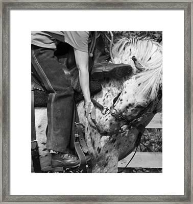 Best Friends Framed Print by Betsy Knapp