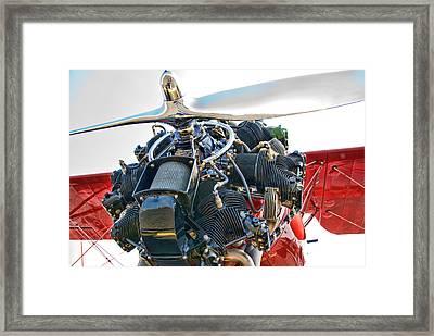 Radial  Framed Print by Steven Richardson