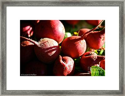 Radishes At Sunrise Framed Print by Susan Herber
