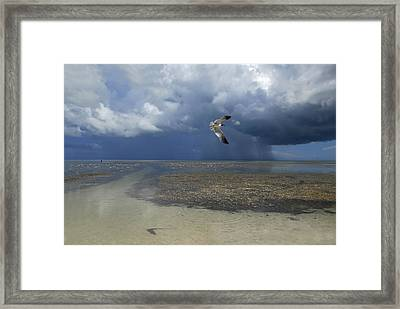 Rain Falls From A Huge Cloud Framed Print by Raul Touzon