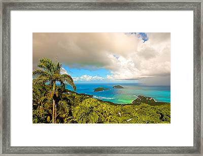Rain In The Tropics Framed Print by Keith Allen