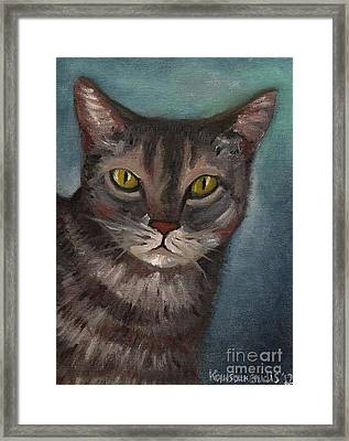 Rain The Cat Framed Print by Kostas Koutsoukanidis