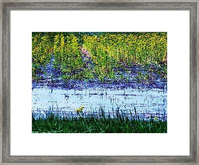 Rainbow Field Framed Print by Todd Sherlock