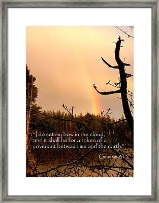 Rainbow Scripture Genesis 9 Framed Print by Cindy Wright