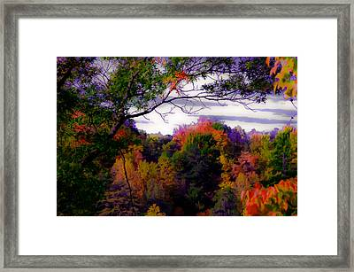 Rainbow Treetops Framed Print by DigiArt Diaries by Vicky B Fuller