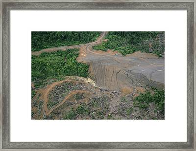 Rainforest Logging Activities Framed Print by Gerry Ellis