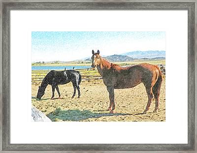 Ranch Horses Framed Print by Lenore Senior and Dawn Senior-Trask
