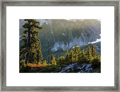 Rare Sunset Framed Print by Albert Seger