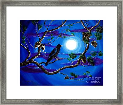 Raven In Pine Tree Branches Framed Print by Laura Iverson