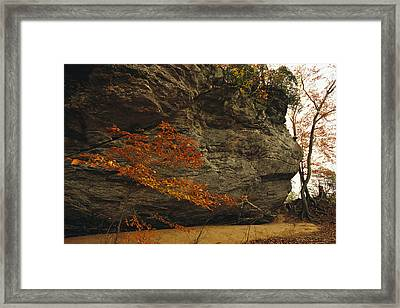 Raven Rock, Trail, And Autumn Colored Framed Print by Raymond Gehman