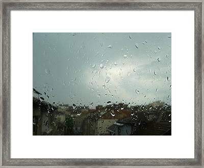 Rayni Day Framed Print by Mara Barova