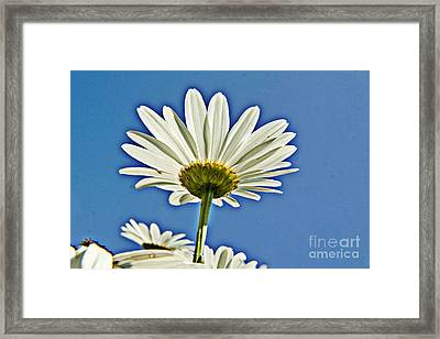 Reach For The Blue Sky Framed Print by Darleen Stry
