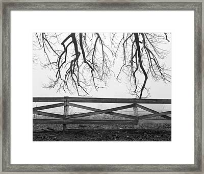 Reaching For Infinity Framed Print by Jan Faul
