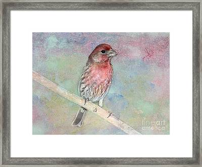 Ready To Sing My Song Framed Print by Betty LaRue