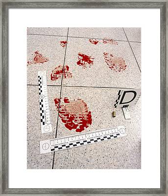 Recording Evidence Framed Print by Mauro Fermariello
