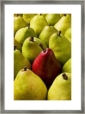 Red And Green Pears  Framed Print by Garry Gay