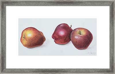 Red Apples Framed Print by Margaret Ann Eden