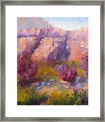 Red Bud Trees Framed Print by Terry  Chacon