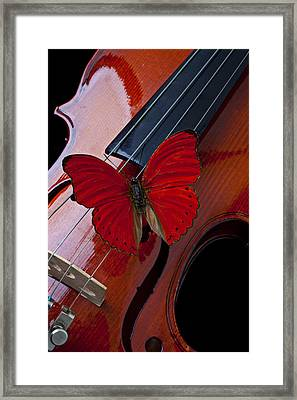 Red Butterfly On Violin Framed Print by Garry Gay