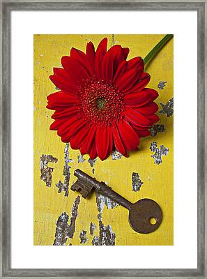 Red Daisy And Old Key Framed Print by Garry Gay