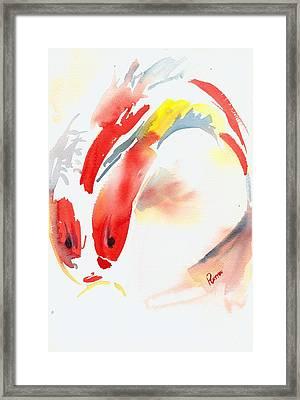 Red Koi Framed Print by Rachel Dutton