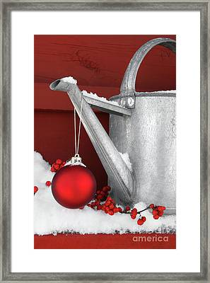 Red Ornament On Watering Can Framed Print by Sandra Cunningham