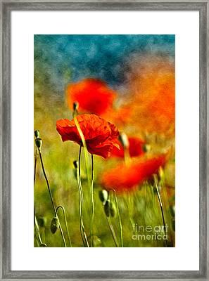 Red Poppy Flowers 01 Framed Print by Nailia Schwarz