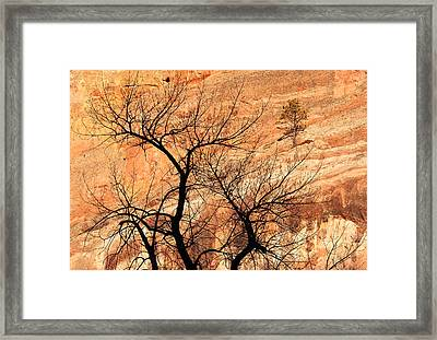 Red Rocks And Trees Framed Print by Adam Pender