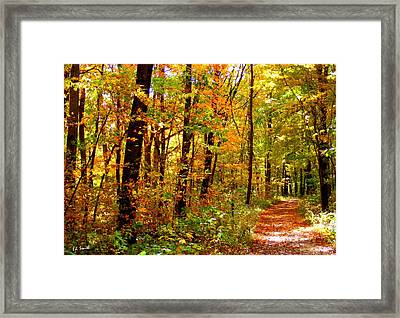 Red Run Trail Framed Print by Ed Smith