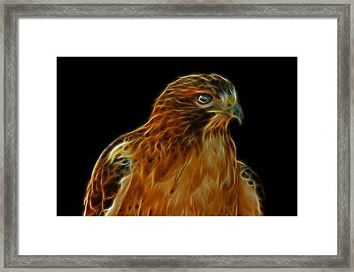 Red-tailed Hawk Framed Print by Sandy Keeton
