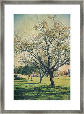 Redemption Framed Print by Laurie Search