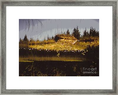 Reflection Framed Print by Alcina Morello