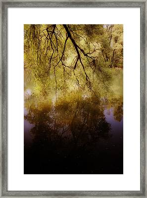 Reflection Framed Print by Joana Kruse