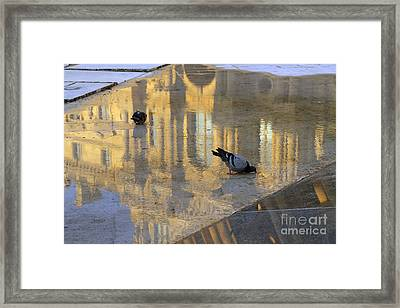 Reflection Of The Louvre In Paris Framed Print by Louise Heusinkveld