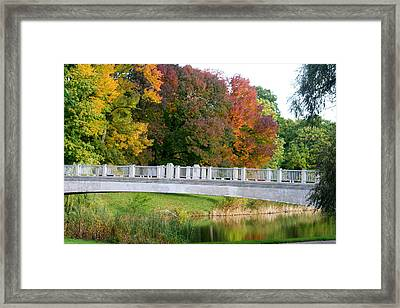 Reflections Of Fall Framed Print by Kay Novy