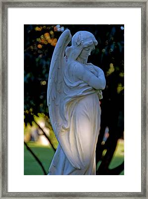 reflective I Framed Print by Phil Bongiorno