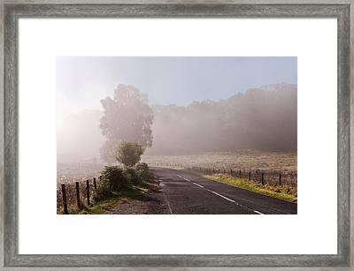 Refreshing Morning Fog In Trossachs. Scotland Framed Print by Jenny Rainbow
