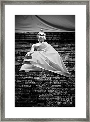 Regal Framed Print by Dean Harte
