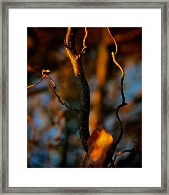 Releasing Flares Framed Print by Odd Jeppesen